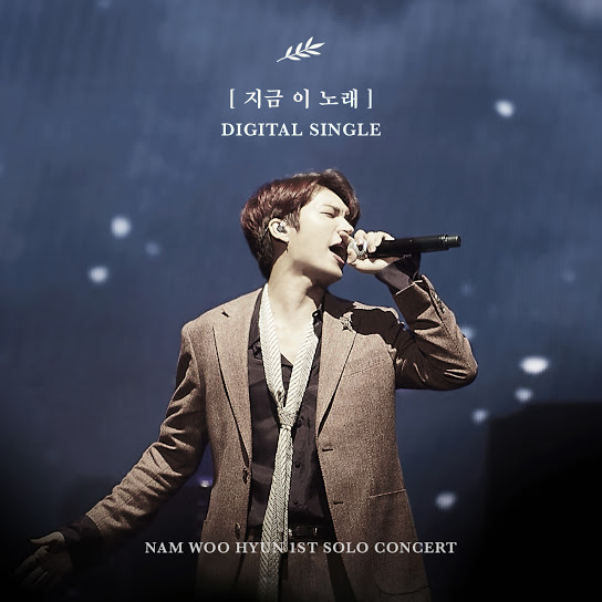A Song For You(Nam Woo Hyun)